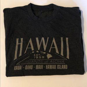Other - BOGO ❄️ Hawaii T-Shirt